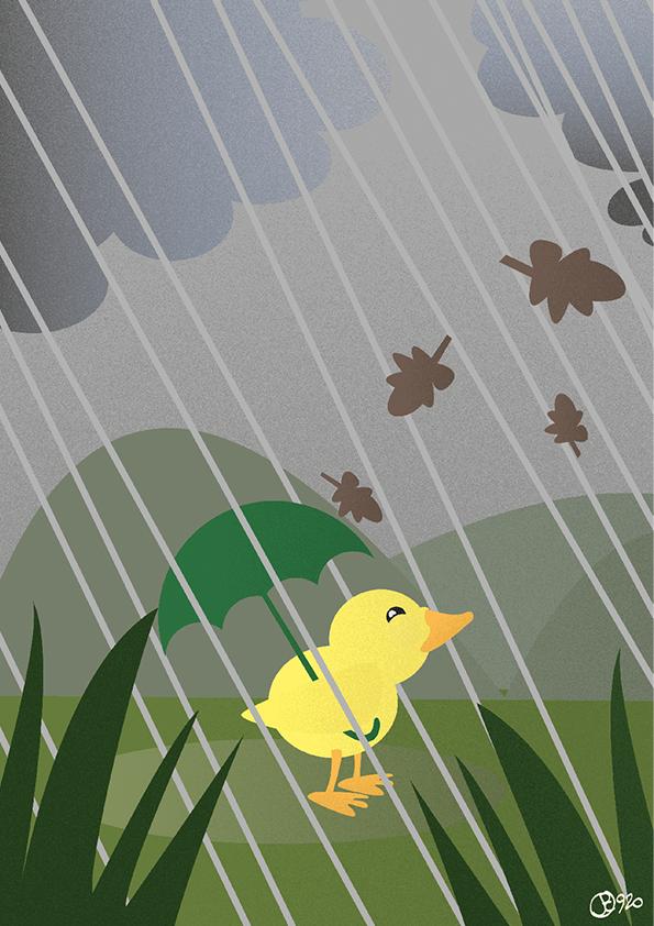 Caneton sous la pluie